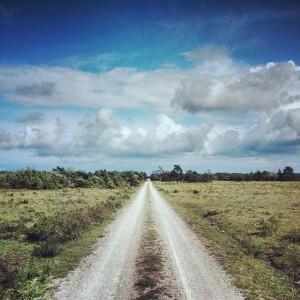 Vägen mot Skär på Gotland.