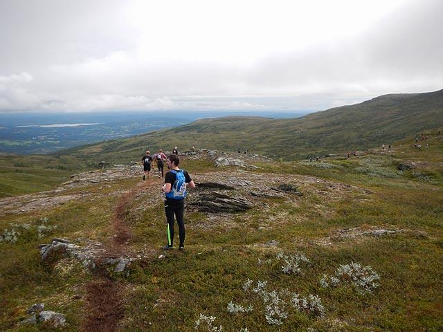 Skalknippen, AXA Fjällmaraton