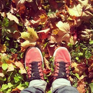 Nike Lunaracer, hösten 2013