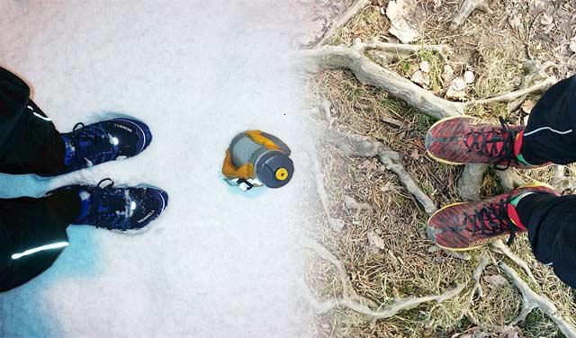 Vinter till vår