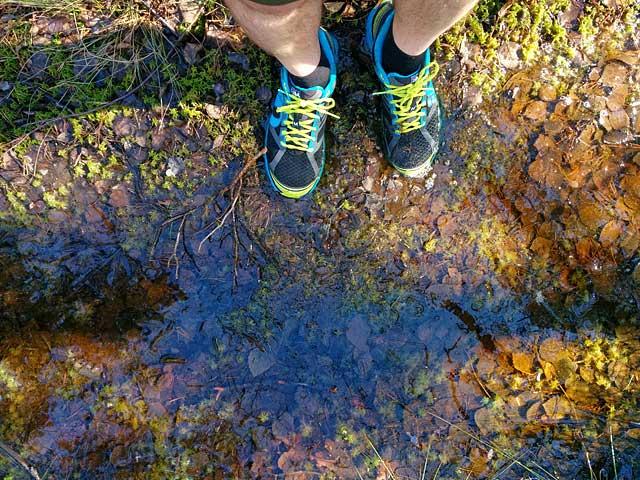 Blöta Pearl Izumi Trail
