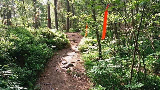 Banmärkning Stockholm Trail