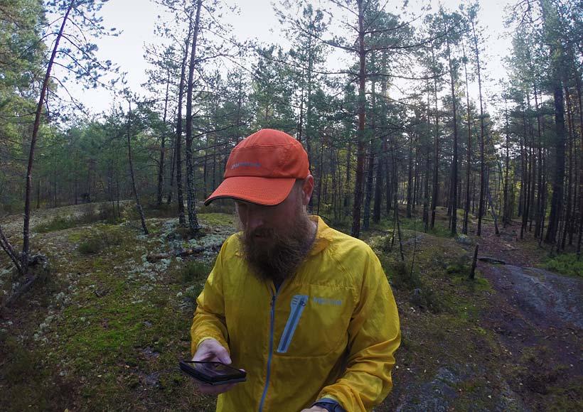 World Wide Woods