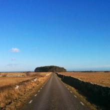 Vår på södra Gotland